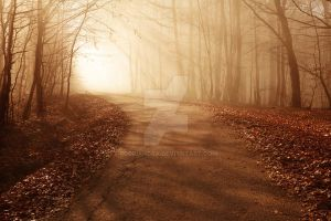 The bronze road by Floriandra