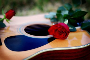 Rose and Guitar by ambie-bambi