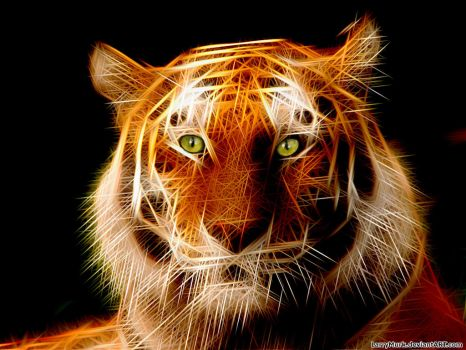 Draw Flaming Siberian Tiger GIMP Rodilius Filter by larrymurk