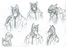 Blacksad sketch by tanya-buka