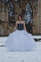 Ice queen stock 65 by Random-Acts-Stock