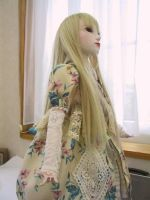 Ball Jointed Doll 3 by hal-io