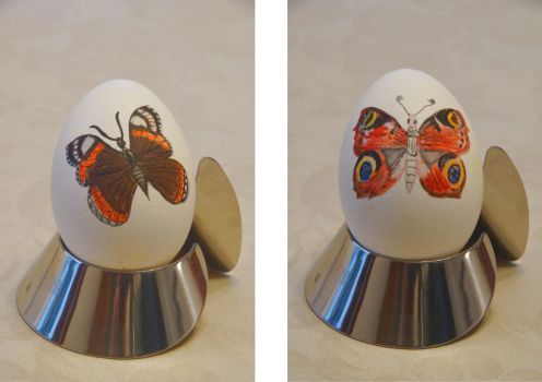 Easter Egg: Red Admiral + Peacock by bifishiar