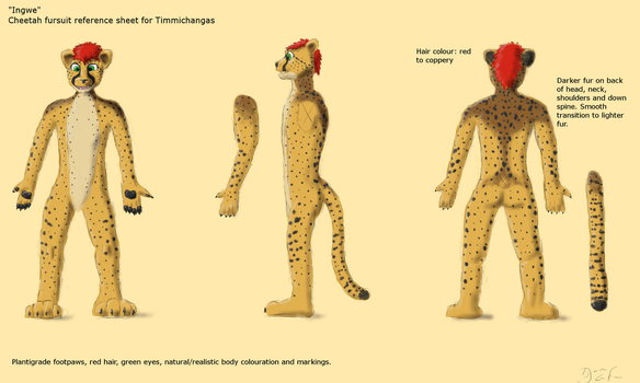 Ingwe fursuit refsheet for Timmichangas by Doran-Eirok