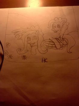 Fluttershy and pinkie by HarmonicBrony