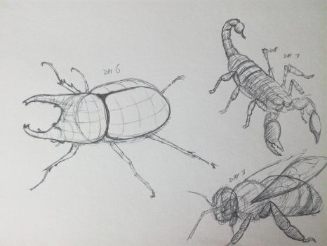 Inktober 2017, Day 06-08: Insects and Arachnids by GLangGould