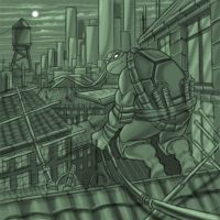 Ninja Turtles - Michelangelo by HAOSvip