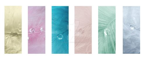 Feather Drops Montage by EseffpePhotography