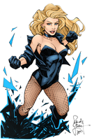 Black Canary by Sorathepanda