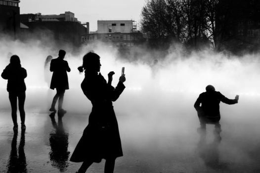 Snappers In The Fog by torobala