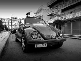 : : Beetle by mrjese