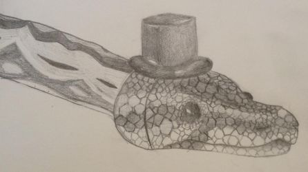 Snake in a hat by TheGreenNightingale