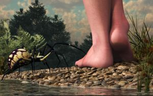 The Hazards of Barefoot Hiking by deskridge