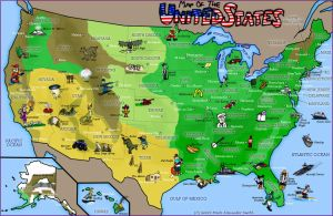 Map Of The United States by FreyFox