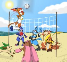 RD Volley Ball Brawl by ArtMaster8D