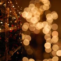 Christmas Reabilitation by Catrinel-Cotae
