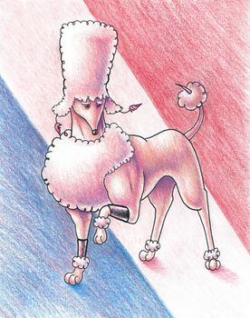 Poodle Polnareff by Pickledsuicune