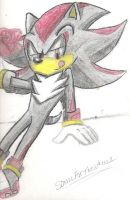 sexy shadow by SonicForTheWin1