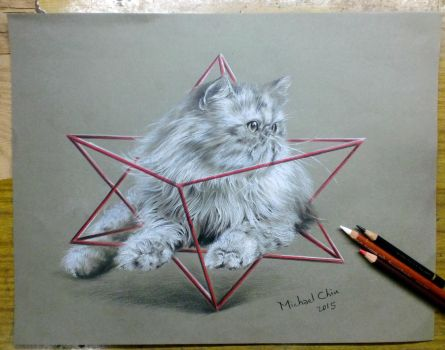 Cat with a Merkaba grid by Michael-Chiu-2013
