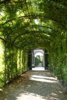 green path03 by ForestGirlStock