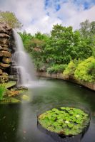 Zoo Waterfall II - Exclusive HDR Stock by boldfrontiers