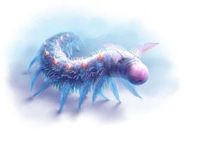 Onychodictyon - Real Animal by Fany001