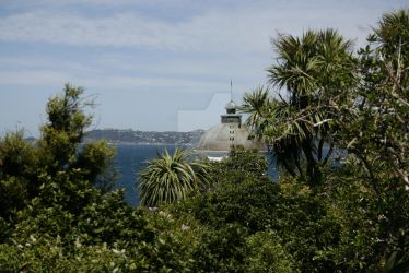Somes Island Wellington - Tip of the lighthouse by VenusFlowerDesignNZ