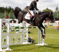 Jumping stock 27 by Kennelwood-Stock
