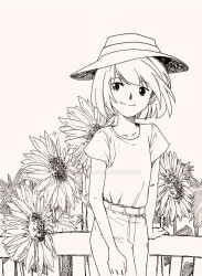 Sunflowers by Risaiwata