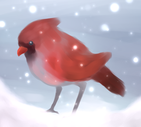 Snow Bird by Reilon242
