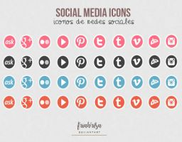 Social media icons psd by friabrisa