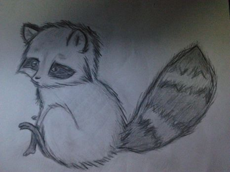 Raccoon Draw by anameirelles13