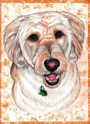 Zoey Portrait by Gray-Ghost-Creations