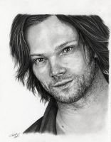 Jared by Adniv