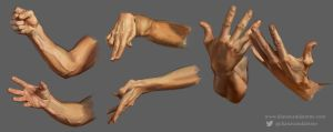 Male hand studies by DianaVanDamme