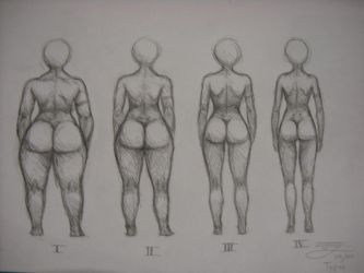 female body types doodle by The-Bambookazee