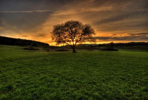 Until the end comes by JoInnovate