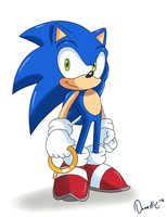 Sonic is awesome by Domestic-hedgehog