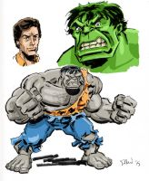 Animated-style Hulk by Simon-Williams-Art