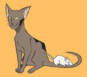 cat and mouse by Middynos