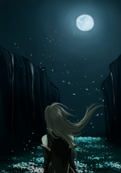 Wish to the Starry Sky by Laitma