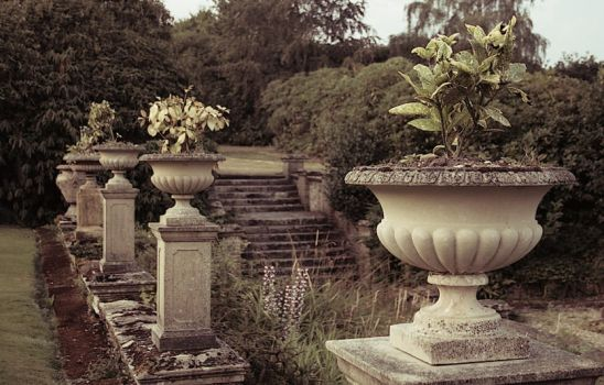 Img 3279-terrace-and-steps by barefootliam
