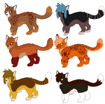 5 point or best offer cat adopts 3/6 Open by Quad-mod