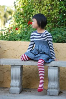Striped Stockings 6 by SBG-CrewStock