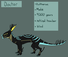 Doctor Reference Sheet by Noodle-Drake