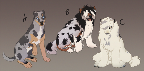 Tokota Pup Adoptables - Imported Versions CLOSED by Lachtaube