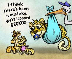 Leopard Gecko Mix Up by paulcarlisle