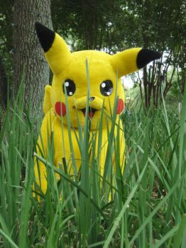 A Wild Pikachu Appears by pikabellechu