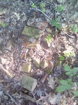Bricks in the woods. by shifter124