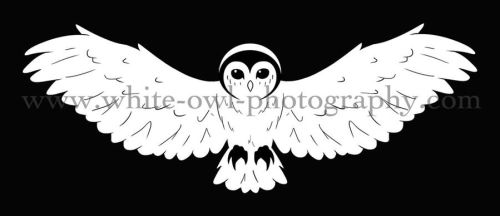 White Owl Photography Logo by LightningMcTurner